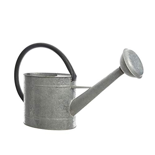 Decoris 83300 Regadera de Zinc, Solo Uso Decorativo, 5 litros, Gris