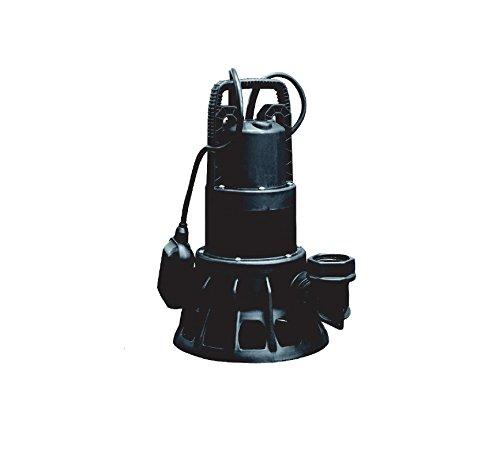 Unbekannt Dab Pompe Submersible Feka BVP 750 m de A, Noir, 40 x 20 x 20 cm, rk220