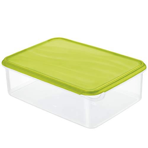 Rotho Rondo Contenitore per Frigorifero da 5 l, Plastica (PP) Senza BPA, Verde, 5 Liter (38,9 x 31,5 x 24 cm)