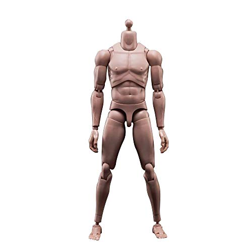 ANTSIR MX02-A 1/6 Scale Europe Skin Male Figure Body Model Toy Fit for Head with Neck