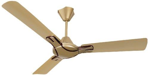 Havells Nicola 900mm High Performance at Low Voltage (HPLV) Ceiling Fan (Bronze Copper)