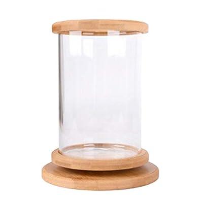 F Fityle Drehbare Aquarium Fischglas Fischbecken Glasbecken Haus Büro Schreibtisch Dekoration