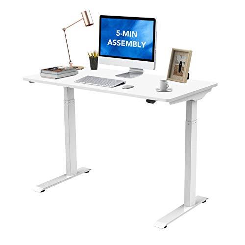 Flexispot Standing Desk Electric Quick Install Height Adjustable Desk 48
