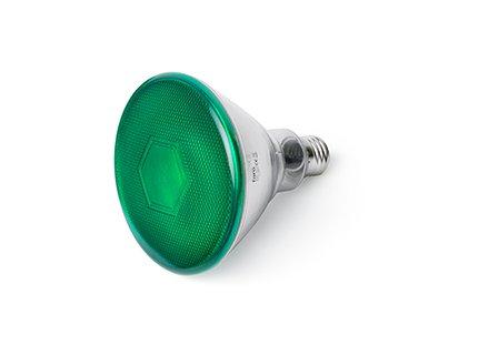 FARO BARCELONA 17399 - Bombilla Par38 LED, 10W, Metal, policarbonato y Cristal, Color Verde (Bombilla incluida)