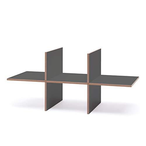 Tojo Hochstapler I Einsatz Modul mit 6 Fächern für modulares Regalsystem I Individuelles Wandregal, Bücherregal, CD Regal I Erweiterung für MDF Regal (Anthrazit Doppelt)