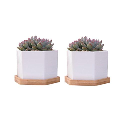 VORCOOL 2 Sets of White Ceramic Hexagonal Succulent Plant Pot Cactus Plant Pot Flower Pot Container Planter Bonsai Pots with Bamboo Tray Perfect Gife Idea