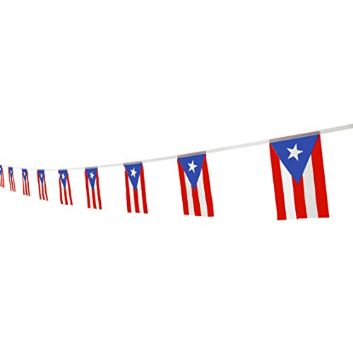 Kind Girl Puerto Rico Flag Puerto Rican Flag,100Feet/76Pcs National Country World Pennant Flags Banner,Party Decorations Supplies for Olympics,Bar,Indoor and Outdoor Flags,International Festival