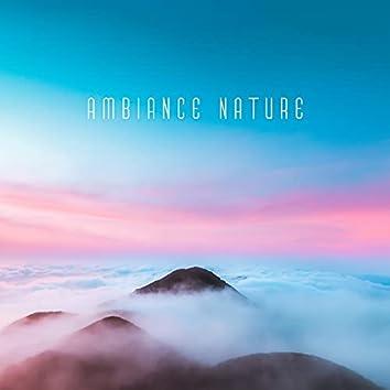 Ambiance nature: Oiseaux chanteurs, Vagues de l'océan, Sons de la forêt et de l'eau