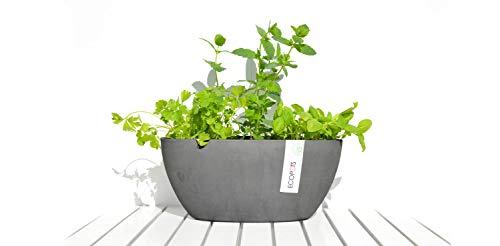 Ecopots Pot de fleurs Sofia en plastique | 30 x 13 x 13,5 cm | Pot de fleurs écologique pour l'intérieur et l'extérieur | Gris