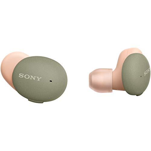 ソニー 完全ワイヤレスイヤホン WF-H800 : ハイレゾ級 / Amazon Alexa搭載 / 最大8時間連続再生 / 小型・軽量 高い接続安定性 専用アプリ対応 マイク搭載 2020年モデル 360 Reality Audio認定モデル アッシュグリーン WF-H800 GM