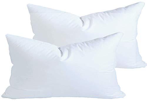 12 x 21 inch pillow insert - 3