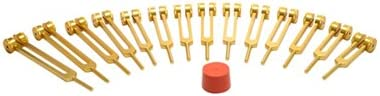 TFS Tuningforkshop 15 pc Set Gold Genuine Free Shipping Fork Tuning Organ Ranking TOP18 Finish Human