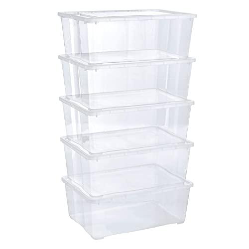 Grizzly 5 x Caja de Almacenaje con Tapa de 10 L - Cajón de Plástico Transparente Apilable - Caja Multiusos Organizador de Armarios para Ordenación de Ropa