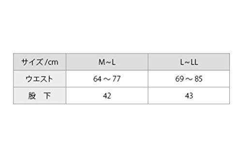 ファイテン(phiten)ステテコレディースストライプL-LL