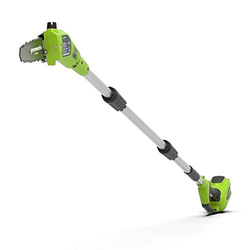 Greenworks Tools Battery Tall Probe G40PS20K2 (Li-Ion 40V 20cm longitud de sable 8 m/s velocidad de la cadena polo auxiliar telescópico de 3 piezas incluyendo la batería de 2 Ah y el cargador), Verde