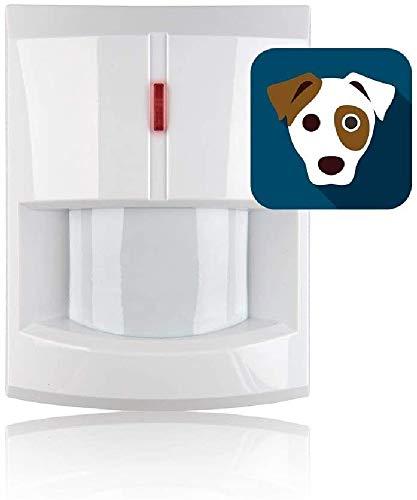 Blaupunkt 251615 (Haustierfreundlich). Kompatibel Funk-Alarmanlagen, Tierimmuner Bewegungsmelder IRP-S1L