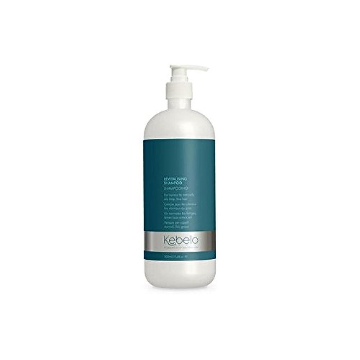 不信に向けて出発ゆるくKebelo Revitalising Shampoo (500ml) - 活力シャンプー(500ミリリットル) [並行輸入品]