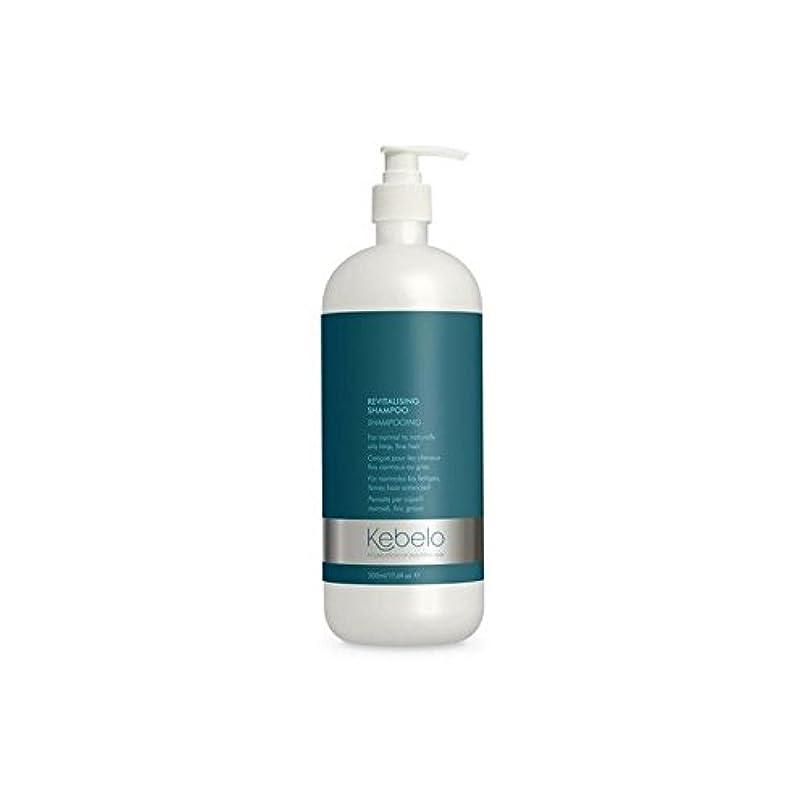 結論記者ミリメートル活力シャンプー(500ミリリットル) x2 - Kebelo Revitalising Shampoo (500ml) (Pack of 2) [並行輸入品]