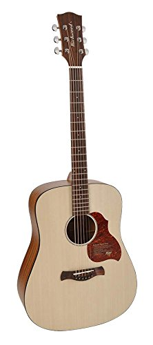 Richwood D-220 Gitarre