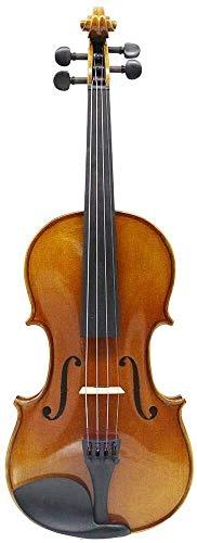 SOAR Violine Massivholz Violine Massivholz Violine Set für Studenten Kinder Erwachsene mit Hardcase, Kolophonium, Zwei Bogen-Violine für Anfänger (Color : Brown, Size : 1/2)