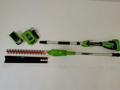 Greenworks Tools 40V accu heggenschaar lang (2300407UA) + 1 x 2 Ah accu + oplader