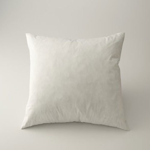 Feather/Down Pillow Form White 18' x 18'