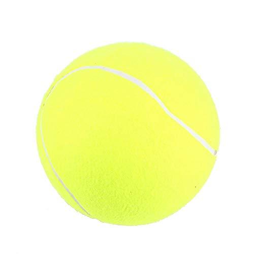Life Tools Hundenapf Fischen Hund CatPet Balls Tennisbälle, Hundespielzeug Ballspielzeug für das Hundetraining 9,5