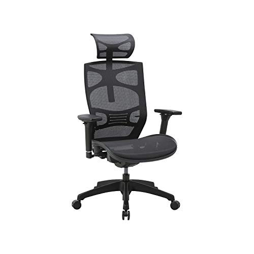 CLATINA Ergonomic Mesh Executive Chair with 4D Arm Rest and...