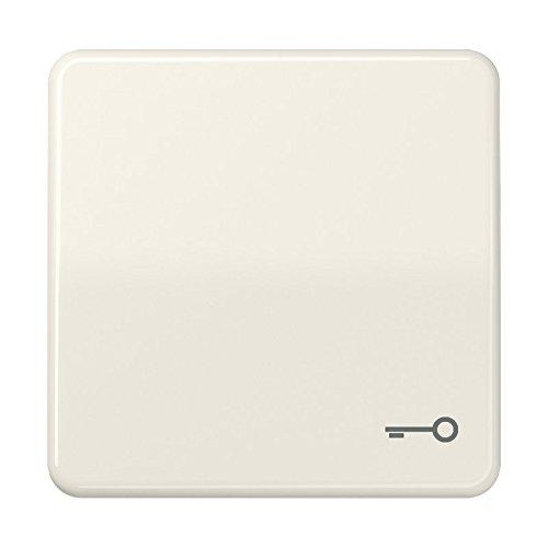 Jung CD590BFT Wippe mit Symbol Tür