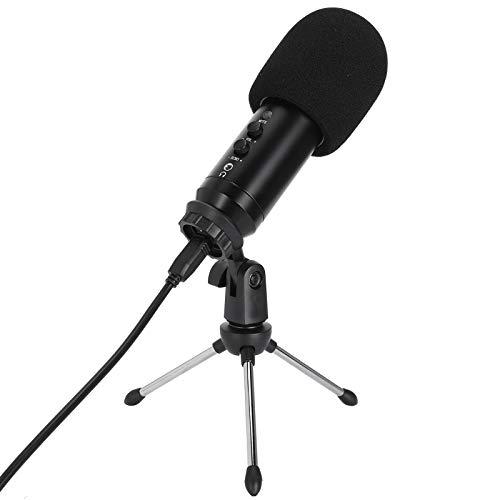 Práctico micrófono de grabación para equipos de audio para estudios de grabación