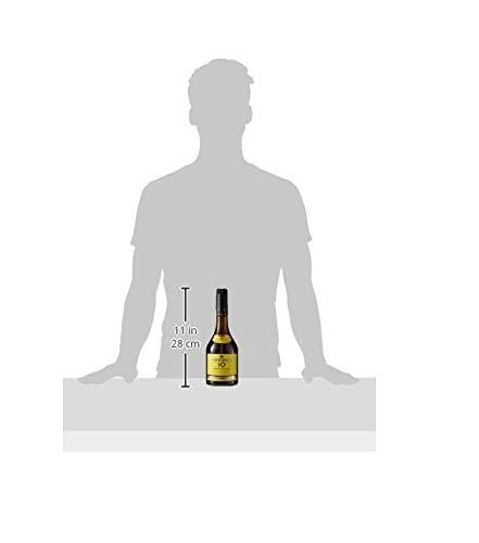 TORRES BRANDY 10 RESERVA IMPERIAL (1x 0,7l) – aus der spanischen Weinbauregion Penedès – im Solera-Verfahren gereift – 70cl mit 38% vol. - 4