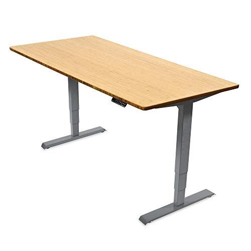 Ergotopia® Elektrisch höhenverstellbarer Schreibtisch | 5 Jahre Garantie | Ergonomischer Steh-Sitz Tisch mit Memory Funktion | Beugt Rückenschmerzen vor & Macht produktiver (160x80 G, Bambus Echtholz)