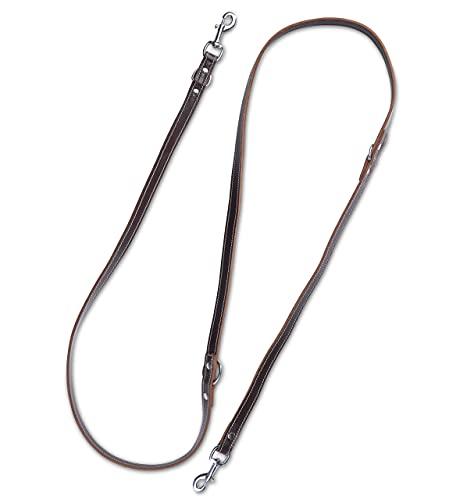 Hundeleine aus Leder - mehrfach verstellbare Führleine 2,40m - Hunde Lederleine extrem Stabil mit Edelstahl-Karabiner - Echt-Leder Leine Sammy (Dunkelbraun)