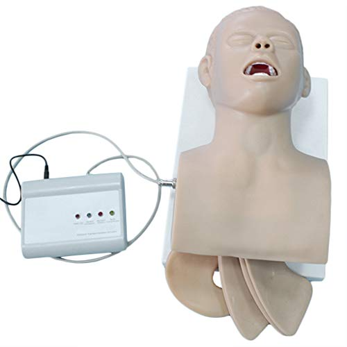 WJH Intubation Studienmodell Airway Management Trainer Oral Nasal Intubation Manikin Ausbildung Studium Lehrmodell für Oral Nasal Intubation Ausbildung