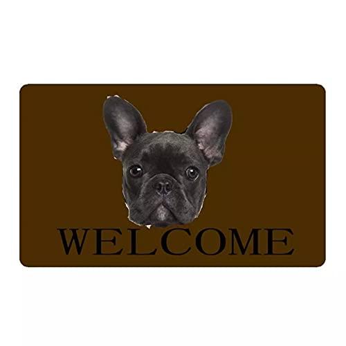 RQJOPE Divertente Bulldog Francese Nero Zerbino di Benvenuto Decorazione della casa Ingresso Tappetino Antiscivolo Tappetino in Gomma per Pavimenti Lavabile Tappeto per la casa-60x90cm