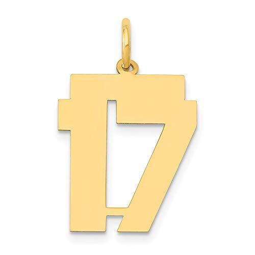Saris and Things 14k Oro Amarillo Pulido Medio número 17 Charm