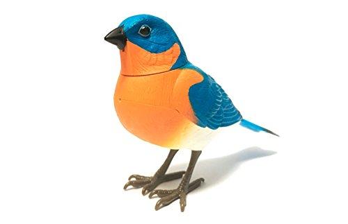 JUGUETECNIC │ Pájaro Cantarín │ ¡Se Activa por Movimiento!   Soporte de Anillo para pasearlo │ Decora Cualquier Espacio con el azulejo Gorjicanelo más Hermoso