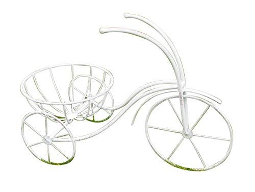 Daisy Bumbles Bicicletta triciclo Bianco Metallo Esterno Giardino Ornamento Casa Decorazione Patio Vaso Fiore Vaso Vaso Vaso Vaso Vaso