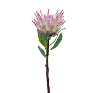 Protea Floral stem. Tropical Silk Flowers Pink Tones FJM02