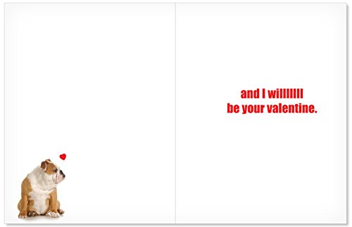 Big I Will Always Valentine's Day Card with Envelope (Letterhead 8.5 x 11 Inch) - Funny Valentines Day Cards with Dog, Cat, Animal Love - Cute, Adorable Notecard Stationery J2180 Photo #2
