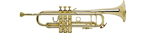 Bach 180-43 Stradivarius Trompete