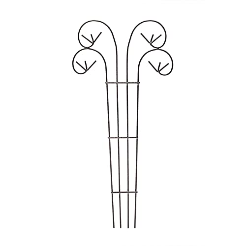 JING LING Grigliato da Giardino in Metallo per Piante Rampicanti, Grigliati per Rampicanti, Forte E Non Facile da Arrugginire, Gabbia per Piante per Rose Struttura di Supporto per Piante Rampicanti