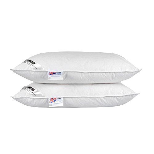 Homescapes LUXUS - Lote de 2 almohadas (relleno de plumas de pato blancas y plumón, funda de algodón, se puede lavar, fácil de cuidar)