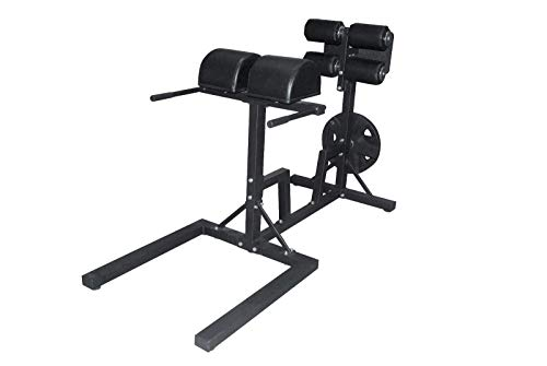 We R Sports Glute Ham Developer Trainer Raise Machine GHD Back Extension Core Gym Strength Training