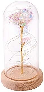 OSALADI Cúpula de cristal rosa Flor artificial ligera en c