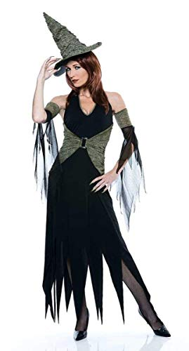Wicked Of Oz The Wicked Witch Costume Adult Large