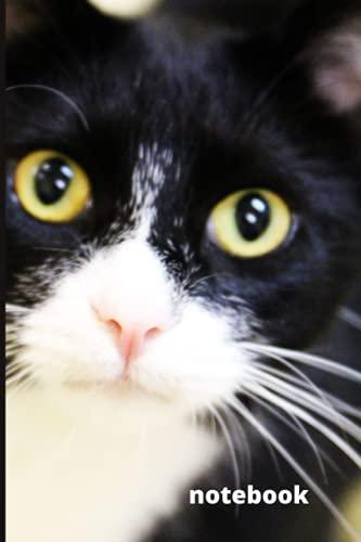 Tuxedo Cat Notebook