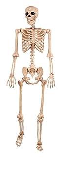 Best pose skeleton Reviews