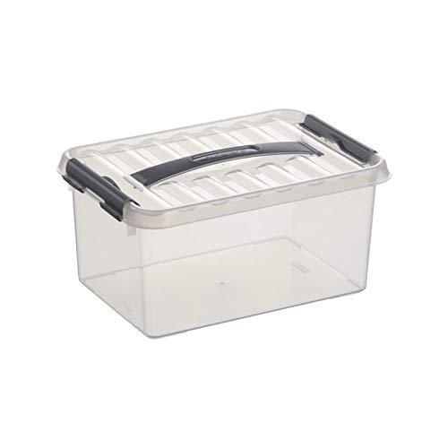 6x SUNWARE Q-Line Box - 6,0 Liter - 300 x 200 x 140mm - transparent/silber