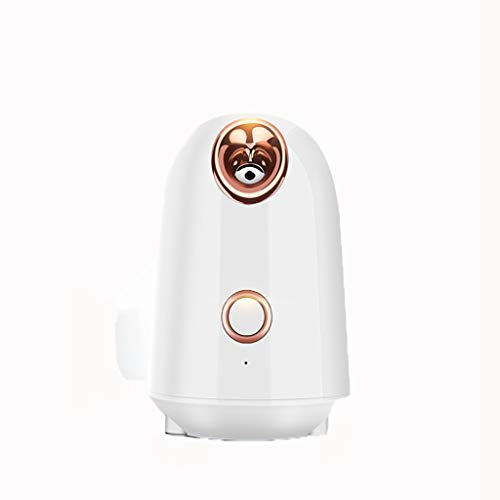 YLWX Nano Facial Steamer Warm Mist Professional Sauna Steam Spa Face Steamer Machine,White